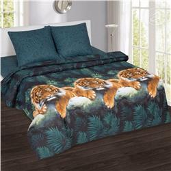 Комплект постельного белья из поплина Амур